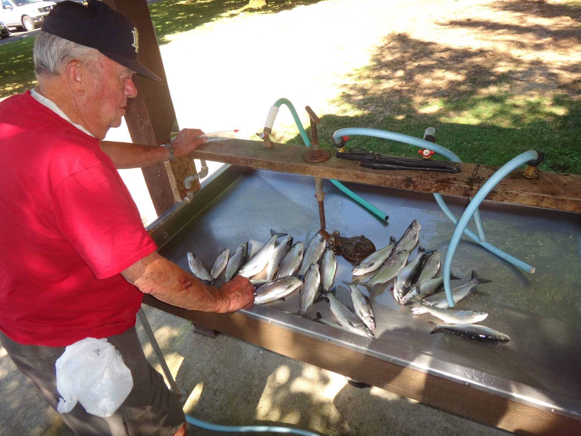 Anglers Brad Halleck & Maurice Halleck: Fish of the Week August 4, 2012