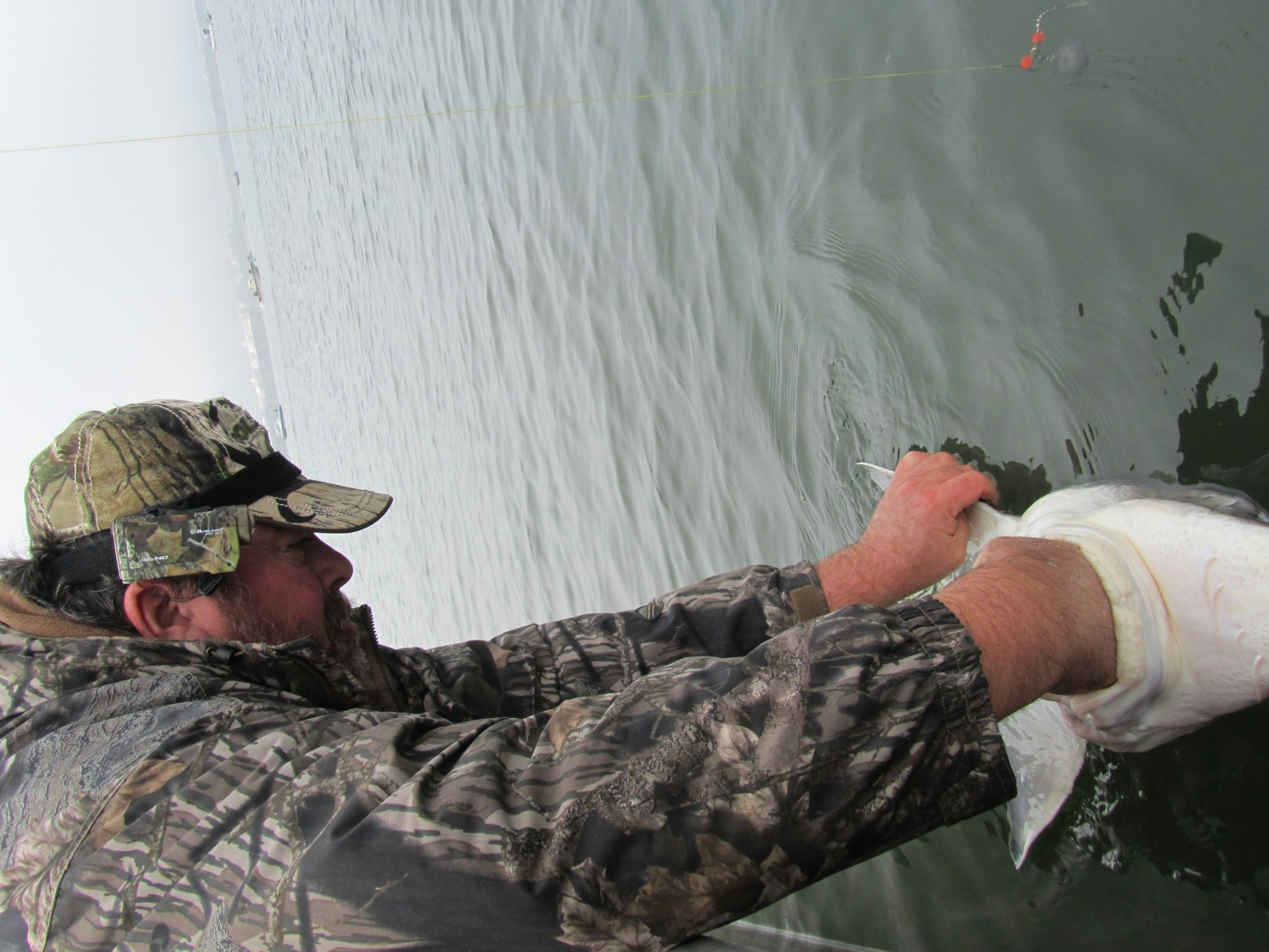 Angler Brad Halleck Fish of the Week October 19, 2013